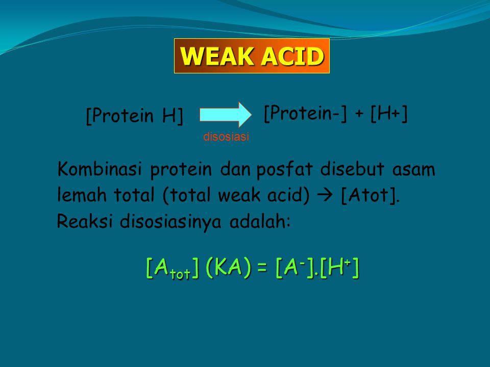 WEAK ACID [Atot] (KA) = [A-].[H+] [Protein-] + [H+] [Protein H]